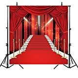 Allenjoy 10x10ft Glorious Red Carpet Photography Backdrop Background Vip Hollywood Stage Photo Studio Props
