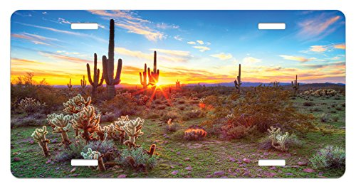 Multicolor Sun is Setting Between Saguaros Wildflowers in The Sonoran Desert Scene Picture High Gloss Aluminum Novelty Plate Lunarable Saguaro License Plate 5.88 X 11.88
