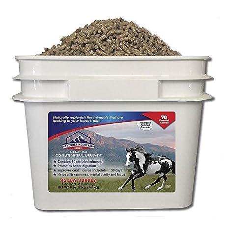 Amazon.com: Thunder Mountain Equine-45day 70 minerales ...