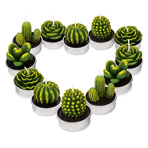 GEESEN Cactus Tealight Candles,Cute Tea Lights Decorative for Wedding Birthday Party Home Decoration 12PCS by GEESEN