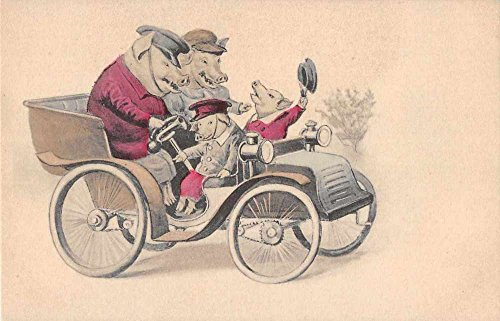 Dressed Pigs Driving Car Antique Postcard J56345