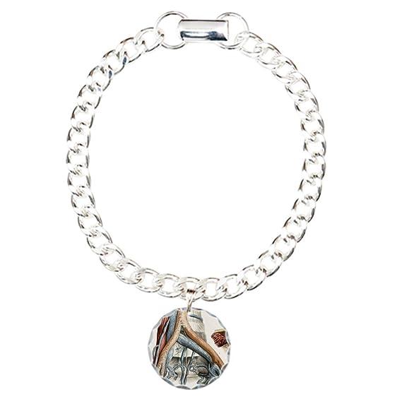 Amazon.com: CafePress - Iliac Blood Vessel Nerve - Charm Bracelet ...