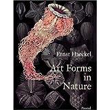 Art Forms in Nature: Prints of Ernst Haekel
