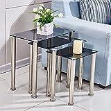 Huiseneu Modern Living Room Nesting Table Black Glass Set of 3 Sofa Coffee Tea Snack Table Side Table End Table Home Furniture (Rectangular Black Glass)