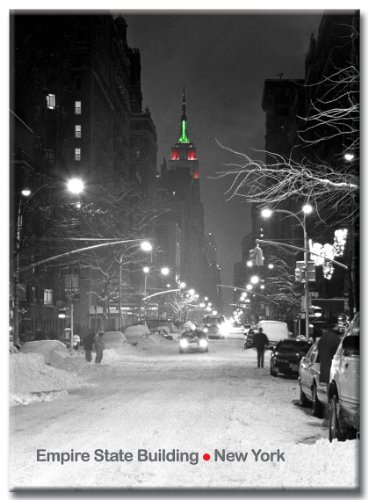 Empire State Building Christmas Lights - New York City Photo Souvenir Refrigerator Magnet - NYC Fridge Magnets