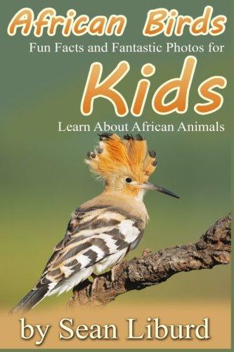 African Birds - 8