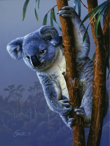 Koala 500 Piece Puzzle