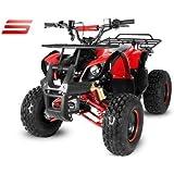 125cc Quad Atv Toronto RG8 S Automatik + Rückwärtsgang Kinderquad ATV Bike Pocket Kinderfahrzeug