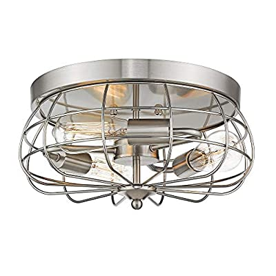 Jazava 3-Light Round Flush Mount Ceiling Light, Black Metal Wire Cage Shade and Antique Brass Accents
