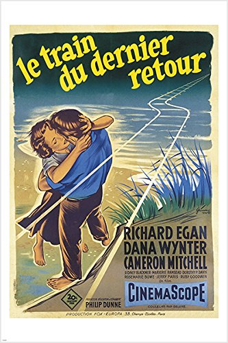 THE VIEW FROM POMPEY'S HEAD vintage FRENCH movie poster 1955 DRAMA 24X36 (reproduction, not an original) (Pompey Movie)