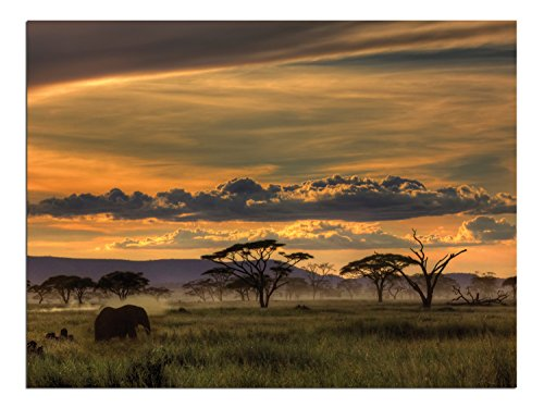 JP London Solvent Free Print PAPXS1X42438 Africa African Animals Safari Plains Dusk Ready to Frame Poster Wall Art 8