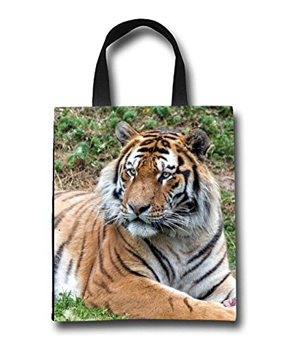 Lying Tiger Beach Tote Bag - Toy Tote Bag - Large Lightweight Market, Grocery & Picnic by Linhong