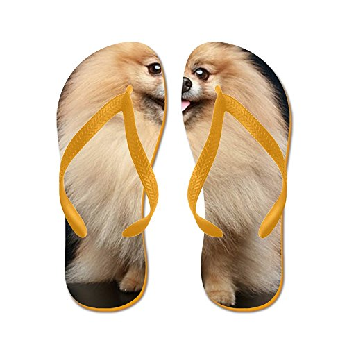 Cafepress Pomeranian Spitz Dog Sitting - Flip Flops, Grappige String Sandalen, Strand Sandalen Oranje