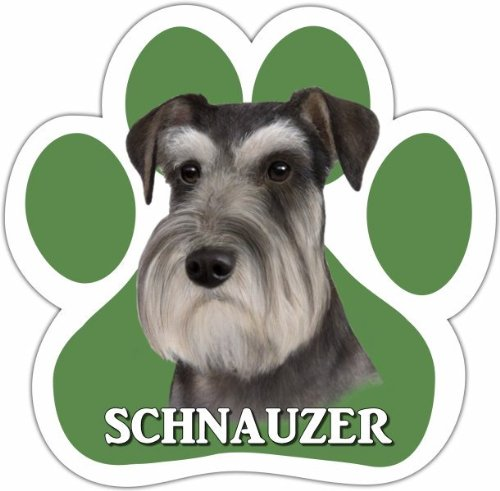 Schnauzer, Uncropped Car Magnet With Unique Paw Shaped Design Measures 5.2 by 5.2 Inches Covered In UV Gloss For Weather Protection]()
