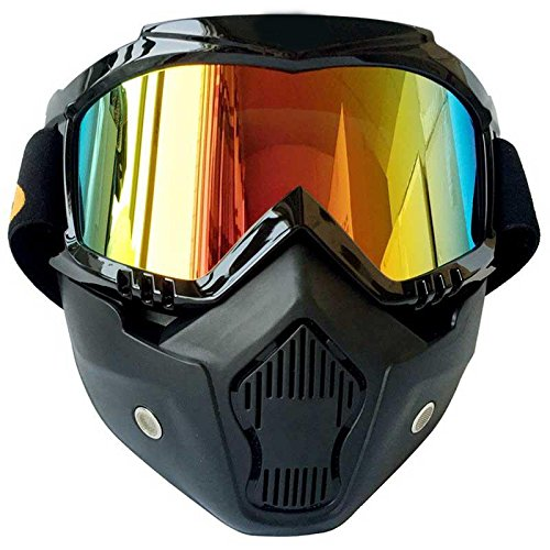 SSXY UV400 Nebel-Proof Windproof UV-Schutz Reitbrille Brille mit Abnehmbaren Gesichtsmaske Skibrille
