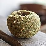 Nyalex-Natural-Moss-Ball-BONSAI-Green-Sphagnum-Moss-Substrate-Moss-Bonsai-Decorative-Flowers-Wreaths-For-Garden-House-Balcony