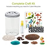 Creativity for Kids Grow n Glow Terrarium - Science Kit for Kids