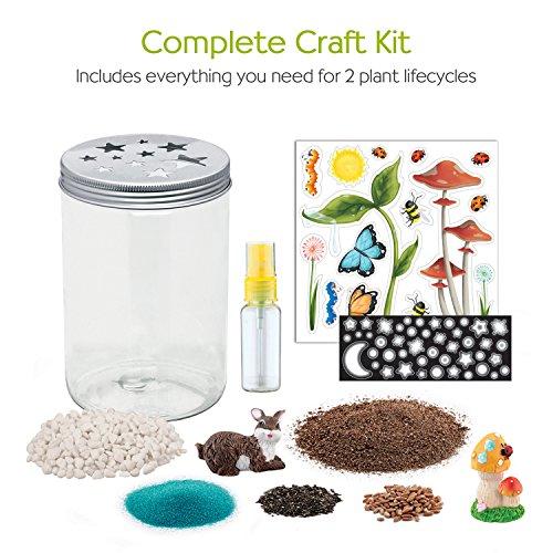 Creativity for Kids Grow 'n Glow Terrarium - Science Kit for Kids by Creativity for Kids (Image #2)