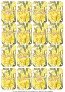 Feliz Daffs a juego del Perfume Floral sentimiento mixto tarjetas por Ann-Marie Vaux