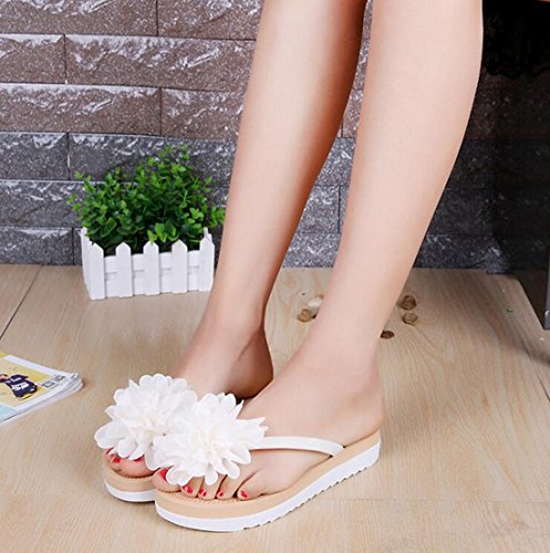 Bel Khskx seven Fleur la Attelle Appartement De Summer Tongs Thirty Han Banchao Student Femmes Fashion wPwSqRr