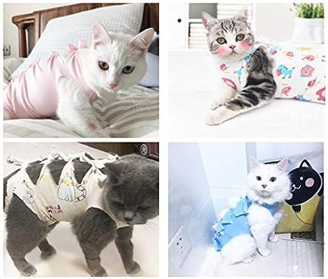 ZJfloral Traje de recuperación para Gatos, Chaleco para Mascotas ...