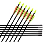GPP28 Fiberglass Archery Target Arrows - Practice Arrows or Youth Arrows for Recurve Bow