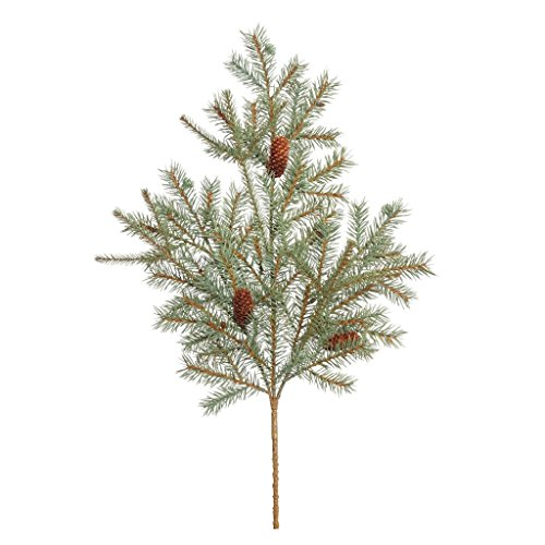Top 10 recommendation spruce tips