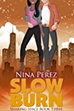 Slow Burn (Sharing Space  Book 3)