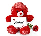 TiedRibbons® Valentines Day Gift for Boyfriend Teddy Bear with Valentine's Special Greeting card and Red Rose