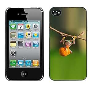 rígido protector delgado Shell Prima Delgada Casa Carcasa Funda Case Bandera Cover Armor para Apple Iphone 4 / 4S /Animal Cute Green Forest Fitness/ STRONG