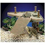 Penn Plax Reptology Small Turtle Pier REP601