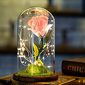 Balai Beauty and The Beast Red Silk Rose Flower Lamp kit That Lasts Forever with Fairy Led Light Enchanted and Fallen Petals Best Gift for Her Valentine's Day Anniversary Girlfriend Wedding 20
