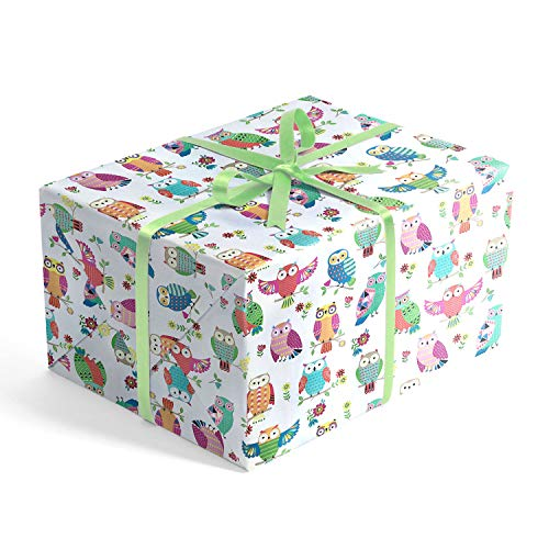 Pretty Owls Children's Premium Folded Wrapping Paper, 2' x 10' Folded Birthday Gift wrap, RevelTM
