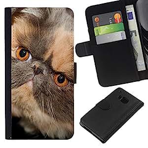 eJoy---La carpeta del tirón la caja de cuero de alta calidad de la PU Caso protector - HTC One M7 - --Persian Shorthair Short Muzzle Cat