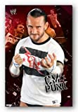 Trends International WWE CM Punk 11 Wall Poster Print