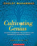 Cultivating Genius: An Equity Framework for