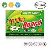 GREEN CATCH Fly Trap, Fly Paper, Effective & Portable Fly Traps for Outdoor and Indoor Use -10 Pack