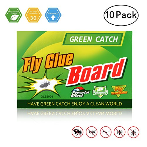 GREEN CATCH Fly Trap, Fly Paper, Effective & Portable Fly Traps for Outdoor and Indoor Use -10 Pack by GREEN CATCH