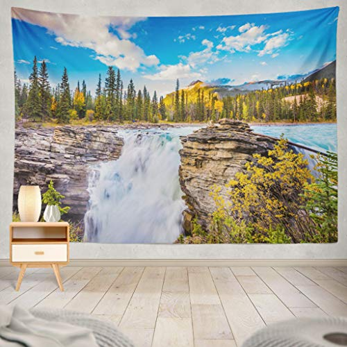 ASOCO Tapestry Wall Handing The Deep Raging Falls Ecological Tourism Clear Autumn National Park Cold Blue Water at Sunset Wall Tapestry for Bedroom Living Room Tablecloth Dorm 60X80 Inches