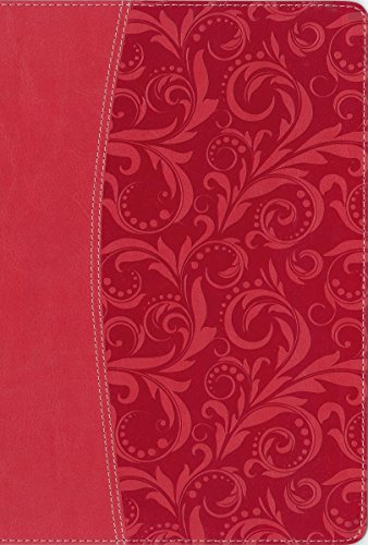NIV, Quest Study Bible, Leathersoft, Pink: The Question and Answer Bible