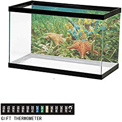 "wwwhsl Aquarium Background,Starfish,Underwater Marine Life with Colorful Sponges and Starfish Surrounded by Seagrass,Multicolor Fish Tank Backdrop 60"" L X 24"" H"