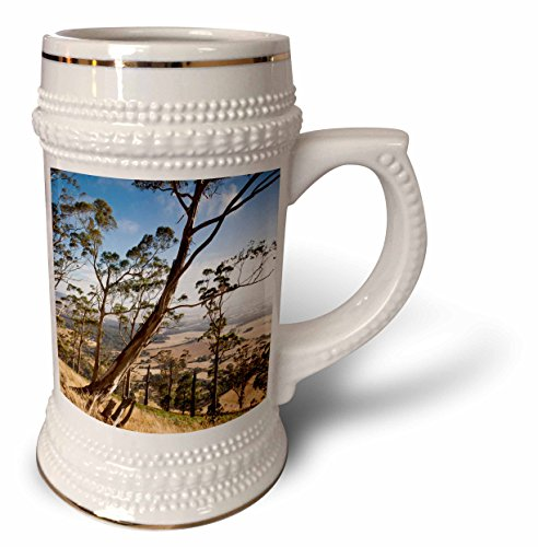 Danita Delimont - Trees - Australia, Victoria, Buninyong, landscape from Mount Buninyong - 22oz Stein Mug (stn_226253_1)