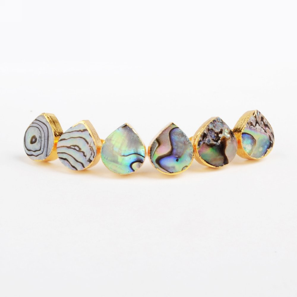 JAB 1 Pair Gold Plated Natural Drop Abalone Shell Stud Earring G0863