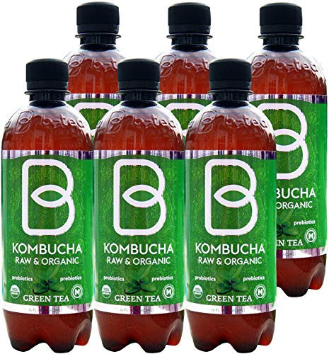 Imported Raw Organic Kombucha Probiotic Green Tea - 16 oz. 6 Pack