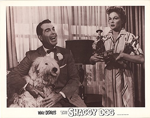 The Shaggy Dog 1967 Authentic 11