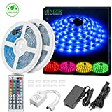 Minger LED Strip Lights Kit, Waterproof 32.8ft 5050 RGB 300led Strips Lighting Flexible Color Changing Rope Lights with...