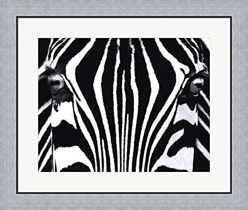 Great Art Now Black And White I By Rocco Sette Framed Art Print Wall Picture  Flat Silver Frame  28 X 24 Inches