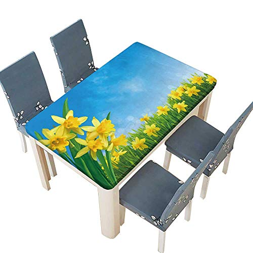 (PINAFORE Polyester Tablecloth Spring Narcissus Flowers in Green Grass Against Sunny Blue Sky for Indoor and Outdoor Use W25.5 x L65 INCH (Elastic Edge))
