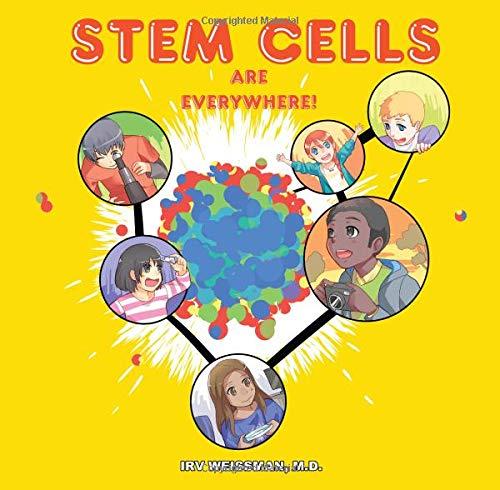Stem Cells Are Everywhere