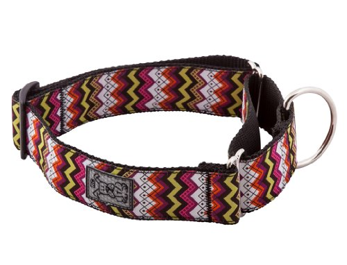 RC Pet Products 1-1/2-Inch All Webbing Martingale Dog Collar, Medium, Tribeca